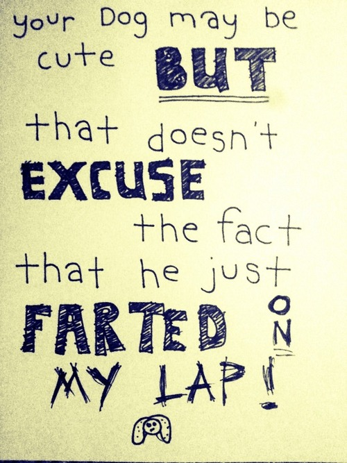 Just because a dog is cute, doesn't excuse it's farts.