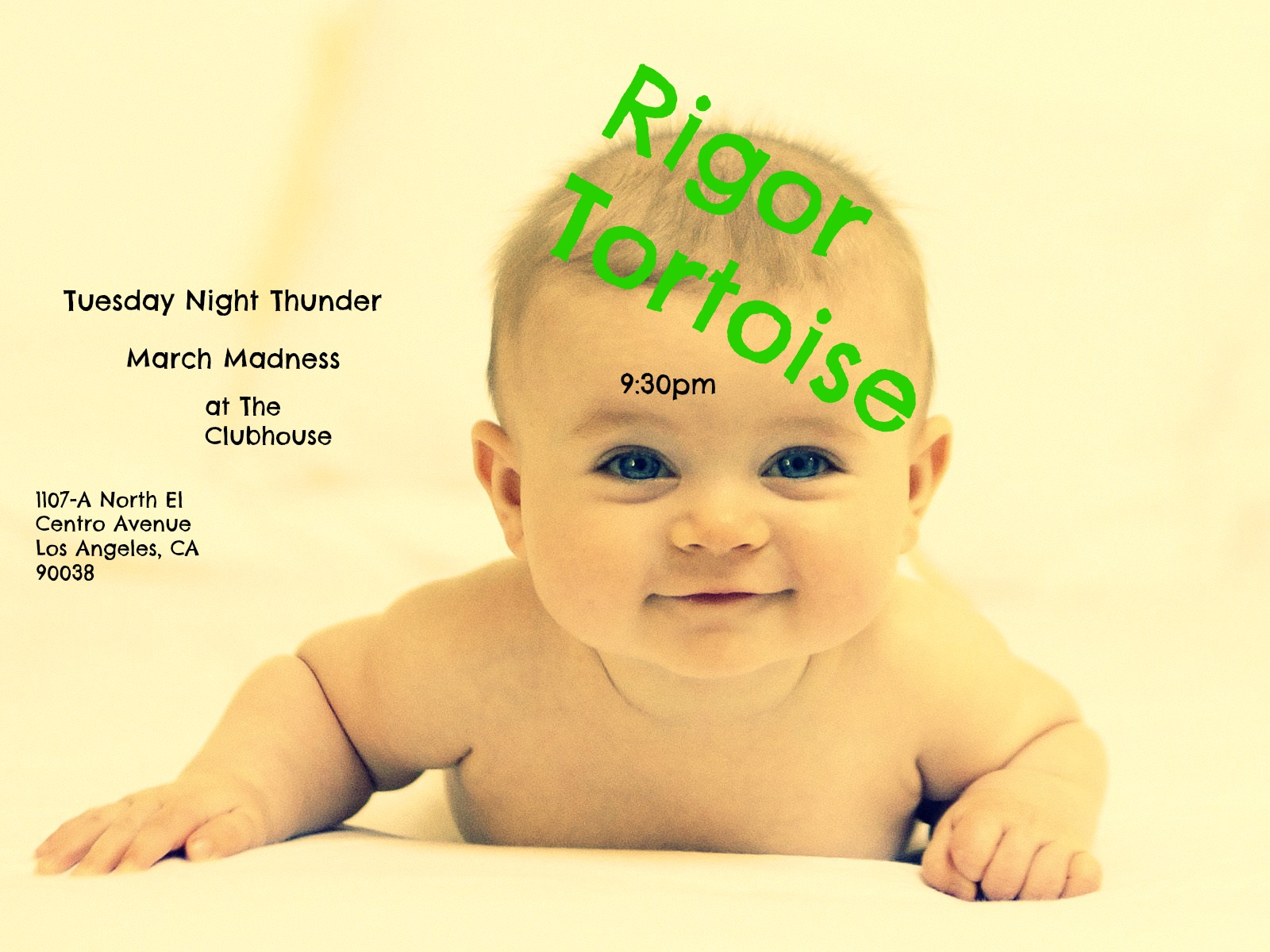 Rigor Tortoise - Tuesday Night Thunder - Live Improv