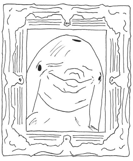 dolphin in a picture frame
