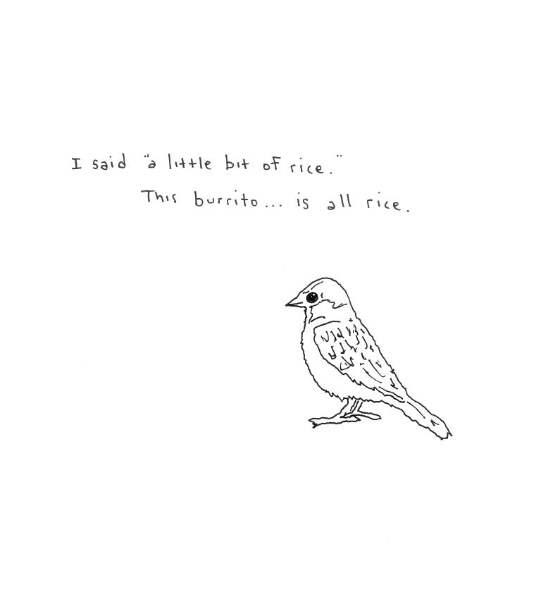 Birds Don't Like Rice Burritos Cartoon